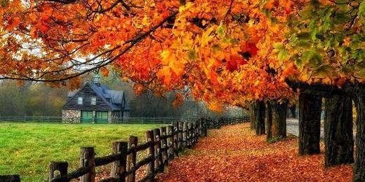Осенний поток «Умных лендингов» с Надеждой Богдановой